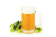 Mug of beer isolated on a white. Royalty Free Stock Images