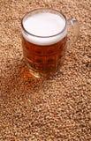 Mug of beer on malt Royalty Free Stock Photos
