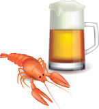 Mug of beer and red crayfish  on white Royalty Free Stock Image