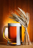 Mug of beer and wheat Stock Images