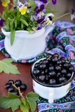 Mug with black currants Stock Image
