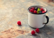 Mug with blueberries and raspberries Royalty Free Stock Images