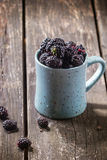 Mug of blueberries Stock Photo