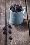 Mug of blueberries Royalty Free Stock Images
