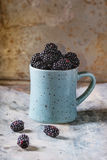 Mug of blueberries Stock Photography