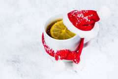 Mug in a cap and scarf Stock Images