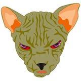 Mug of the cat sphinx Royalty Free Stock Photos