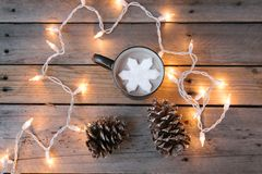 Mug of cocoa, string of lights, and two pinecones. royalty free stock photos