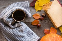 Cup of coffee, cozy knitted scarf, autumn leaves, book and pumpkin on wooden board. Autumn still life, vintage style. Flat lay. Stock Images