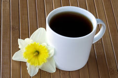 Mug of Coffee with Daffodil Flower Stock Images