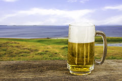 Mug of cold beer. Royalty Free Stock Photography