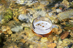 Mug of excellent beer sparkles in the sun in a mountain stream Royalty Free Stock Images