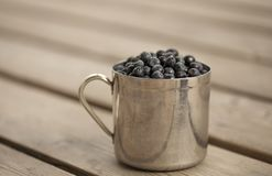 Mug filled with bilberry Royalty Free Stock Image
