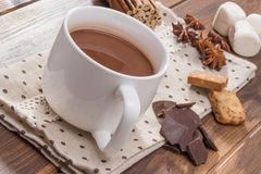 Mug filled with homemade hot chocolate, marshmallow with spice Stock Images