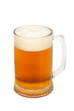 Mug with a fresh beer Royalty Free Stock Image