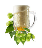Mug fresh beer with Green hops isolated on the white background Stock Image