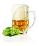 Mug fresh beer with Green hops  on the white background Royalty Free Stock Photography
