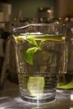 A mug of fresh water with lemon Royalty Free Stock Photography