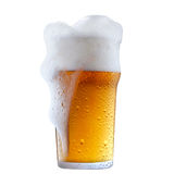Mug of frosty beer with foam. Mug of frosty light beer with foam isolated on a white background royalty free stock images