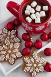 Mug fyllde med varm choklad och marshmallower och pepparkakakakor royaltyfri bild