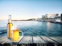 Mug and glass of light beer Royalty Free Stock Photo