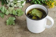 A mug of herbal tea (infusion) with dried black currant leaves Stock Images