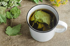 A mug of herbal tea (infusion) with dried black currant leaves Royalty Free Stock Photography