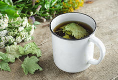 A mug of herbal tea (infusion) with dried black currant leaves Royalty Free Stock Images