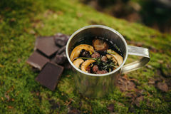 Mug of herbal tea outdoor in the forest with chocolate Royalty Free Stock Photography