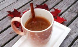 Mug of hot apple cider with cinnamon Stock Photos