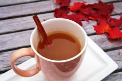 Mug of hot apple cider with cinnamon Stock Photography