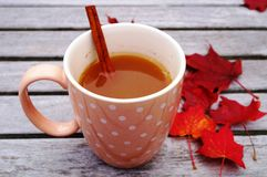 Mug of hot apple cider with cinnamon Royalty Free Stock Images