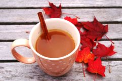 Mug of hot apple cider with cinnamon Royalty Free Stock Photo