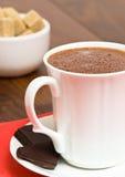 Mug Of Hot Chocolate Stock Images