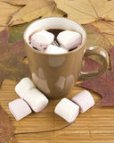 Mug of hot chocolate with marshmallows against Stock Photos