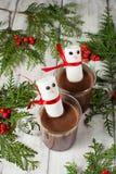 Mug of hot chocolate with marshmallows Stock Photos
