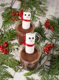Mug of hot chocolate with marshmallows Royalty Free Stock Photos