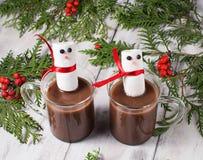Mug of hot chocolate with marshmallows Stock Image