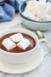Mug with hot chocolate Royalty Free Stock Image