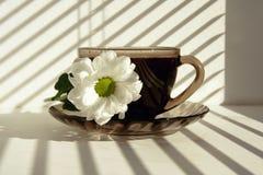 Mug of hot coffee Royalty Free Stock Images