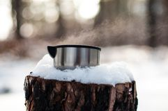 A mug of hot tea stands on a snow-covered stump in the winter, cold, pine forest stock images