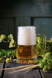 Mug of lager beer Royalty Free Stock Image