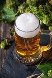 Mug of lager beer Royalty Free Stock Photos