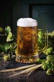 Mug of lager beer Stock Image