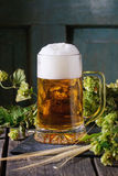 Mug of lager beer Royalty Free Stock Photography
