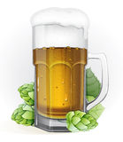 Mug of lager beer and hops Royalty Free Stock Photo