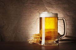 Mug of lager beer with spikelets Stock Images