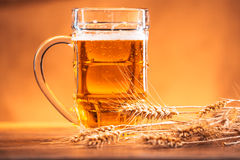 Mug of light beer with ears of wheat on the wooden table Royalty Free Stock Images