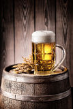 Mug of light beer with foam and spikelets Royalty Free Stock Photo
