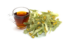 Mug of lime tea and heap of a collected linden on a white backgr Stock Image